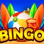 How to Play Eskimo Bingo